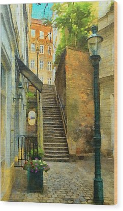 Viennese Side Street Wood Print by Jeff Kolker