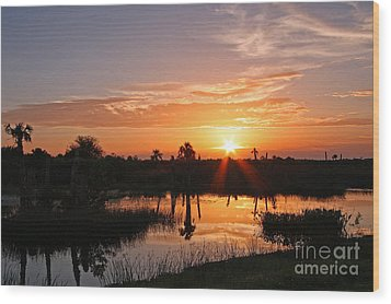 Viera Wetlands Sunset Wood Print by Jennifer Zelik