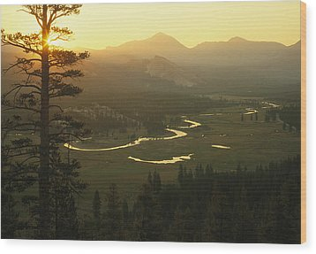 View At Dawn Of The Tuolumne River Wood Print by Phil Schermeister