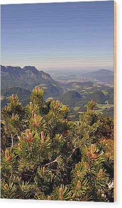 Wood Print featuring the photograph View From Eagles Nest by Rick Frost