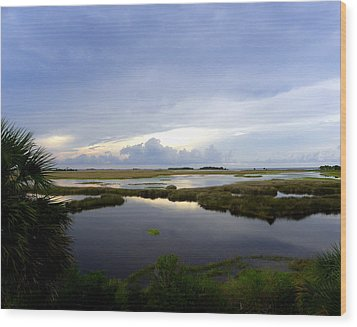 View From St. Marks Lighthouse Wood Print by Judy Wanamaker