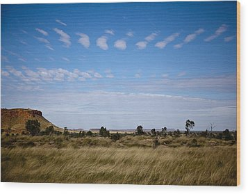 Wood Print featuring the photograph View Into Distance by Carole Hinding