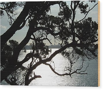 Wood Print featuring the photograph View Of Auckland by Peter Mooyman