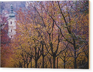 View Of Prague From Mala Strana Park Wood Print by Axiom Photographic