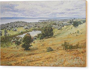 View On The Volga Wood Print by Andrey Soldatenko