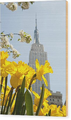 Views Of The Empire State Building And Wood Print by Axiom Photographic