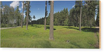 Viking Mound Field Wood Print by Jan W Faul