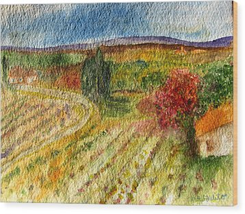 Vineyard In Provence Wood Print by MaryAnne Ardito