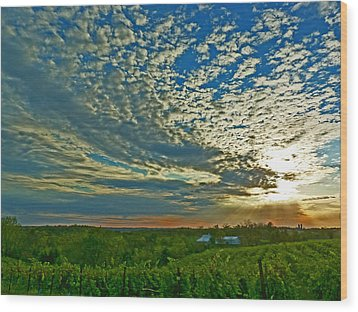 Wood Print featuring the photograph Vineyard Sunset I by William Fields