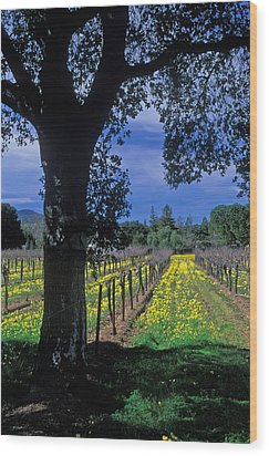 Vineyard View Wood Print by Kathy Yates