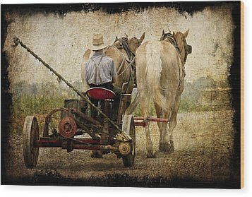 Vintage Amish Life D0064 Wood Print by Wes and Dotty Weber