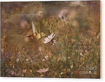 Vintage Beauty In Nature  Wood Print by Susan Gary