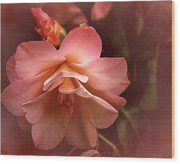 Vintage Camellia No. 1 Wood Print by Richard Cummings