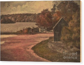 Vintage Farm Wood Print by Gina Cormier