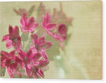 Vintage Hyacinth Wood Print by Margaret Hormann Bfa