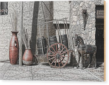 Wood Print featuring the photograph Vintage Museum Display by Lawrence Burry