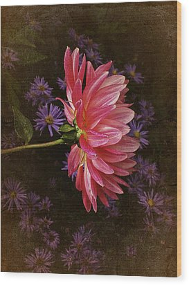 Vintage October Dahlia Wood Print by Richard Cummings