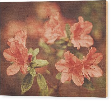 Wood Print featuring the photograph Vintage Pink Azaleas by Mary Hershberger