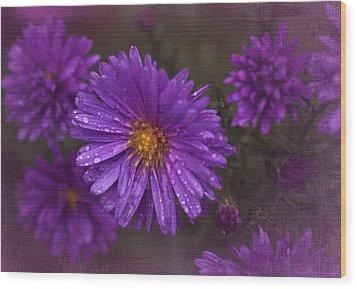 Vintage Purple  Wood Print by Richard Cummings