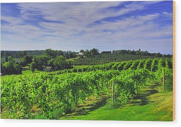 Wood Print featuring the photograph Vinyard View by Coby Cooper