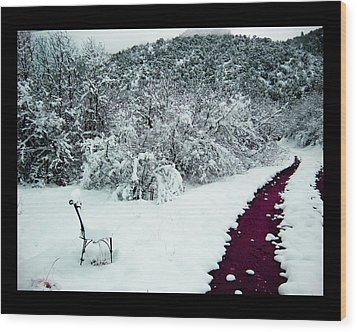 Wood Print featuring the photograph Violet Passage by Susanne Still