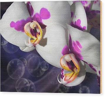 Violet Spots Wood Print by Diana Shively