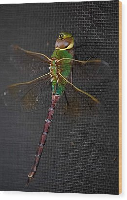 Violet Tail Damsel Wood Print by DigiArt Diaries by Vicky B Fuller