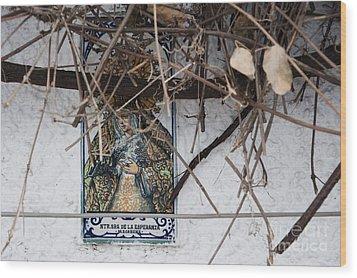 Virgin Mary Of Hope Wood Print by Agnieszka Kubica