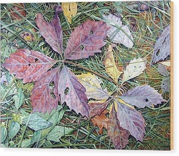 Virginia Creeper Wood Print by - Harlan