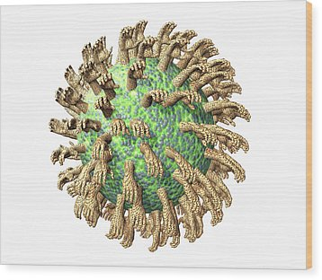 Virus With Hands Wood Print by Laguna Design