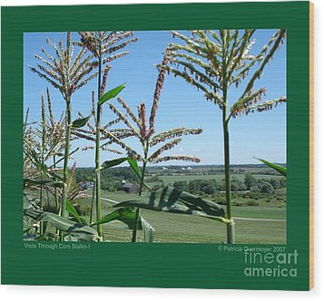 Vista Through Corn Stalks-i Wood Print by Patricia Overmoyer