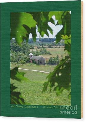 Vista Through Oak Leaves-i Wood Print