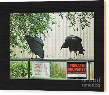 Wood Print featuring the photograph Vultures Guarding Property by Renee Trenholm