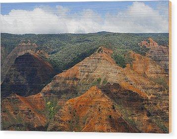 Waimea Canyons Wood Print by Debbie Karnes