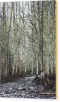 Walk Along The Dungeness Wood Print