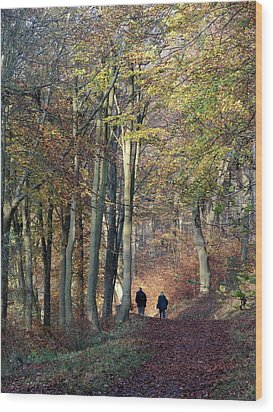 Walk In The Woods Wood Print by Nicola Butt