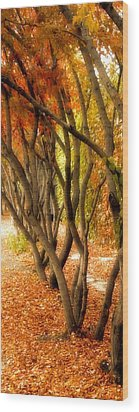 Walk With Me Wood Print by Susan Fisher