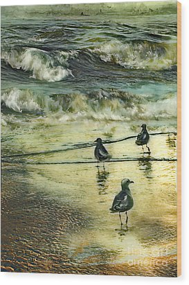 Walking At Beach Wood Print by Anne Weirich