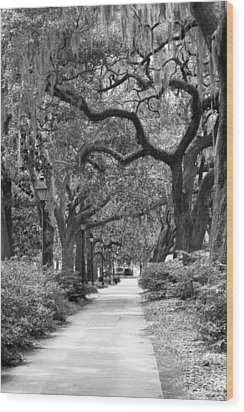 Walking Through The Park In Black And White Wood Print by Suzanne Gaff