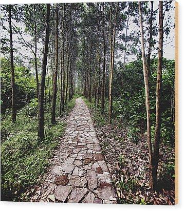 Stone Path Wood Print by Skip Nall