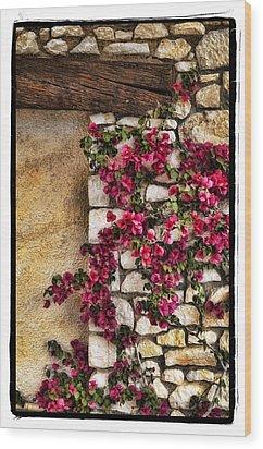Wall Beauty Wood Print by Mauro Celotti