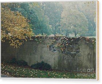 Wall In Fall Wood Print by Maxine Bochnia