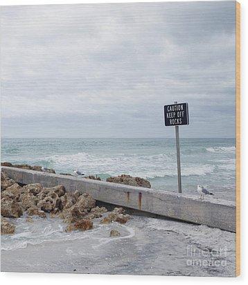 Warning Sign At The Beach Wood Print by Skip Nall