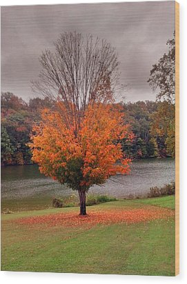 Wood Print featuring the photograph Warrior Path State Park by Janice Spivey