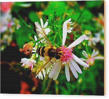 Wasp On Flower Wood Print by Andre Faubert