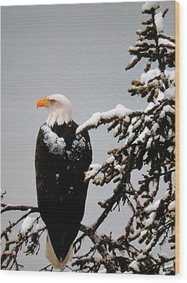 Wood Print featuring the photograph Watching Over The U.s.a. by Shawn Hughes
