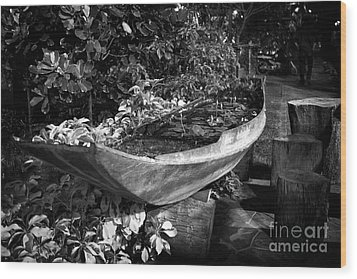 Wood Print featuring the photograph Water Canoe by Thanh Tran