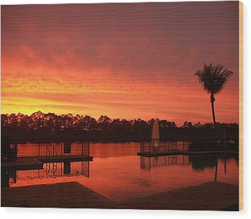 Water Fences Wood Print by Bill Lucas