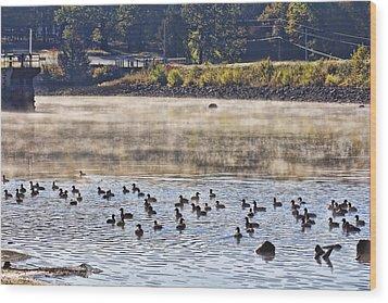 Water Fowl At Lake Wilhelmina Arkansas Wood Print by Douglas Barnard