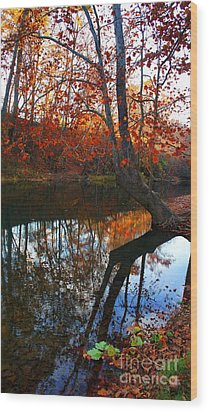 Water In Fall Wood Print